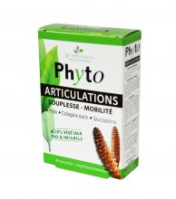 phyto articulations tab n30